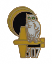 No. 307 (City of Lwów) Polish Night Fighter Squadron Royal Air Force RAF Pin Badge
